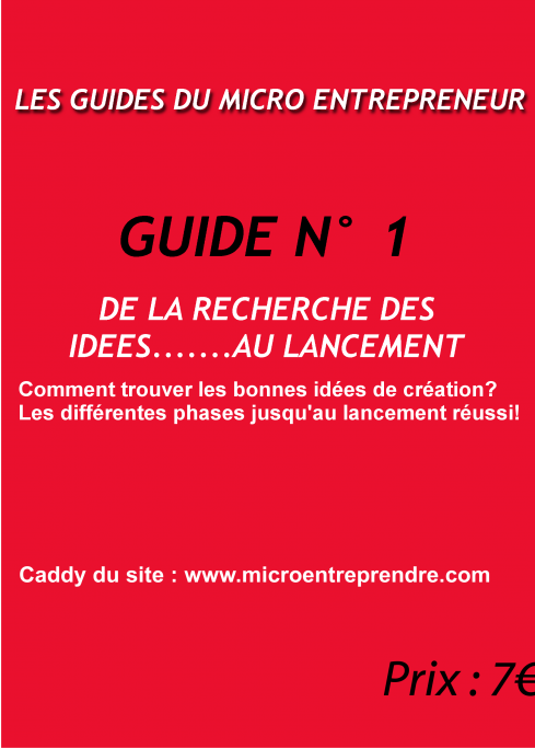 Micro entrepreneur des id es d 39 entreprise for Micro entreprise idee