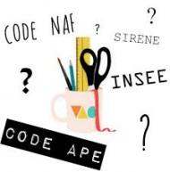 Micro Entreprise Quel Code Ape